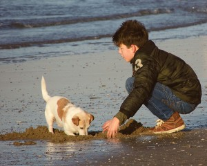boy-on-beach-with-puppy