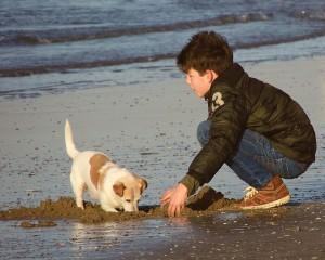 boy-on-beach-with-puppy